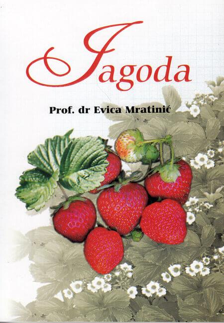 gajenje jagode