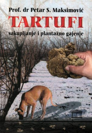 tartufi sakupljanje